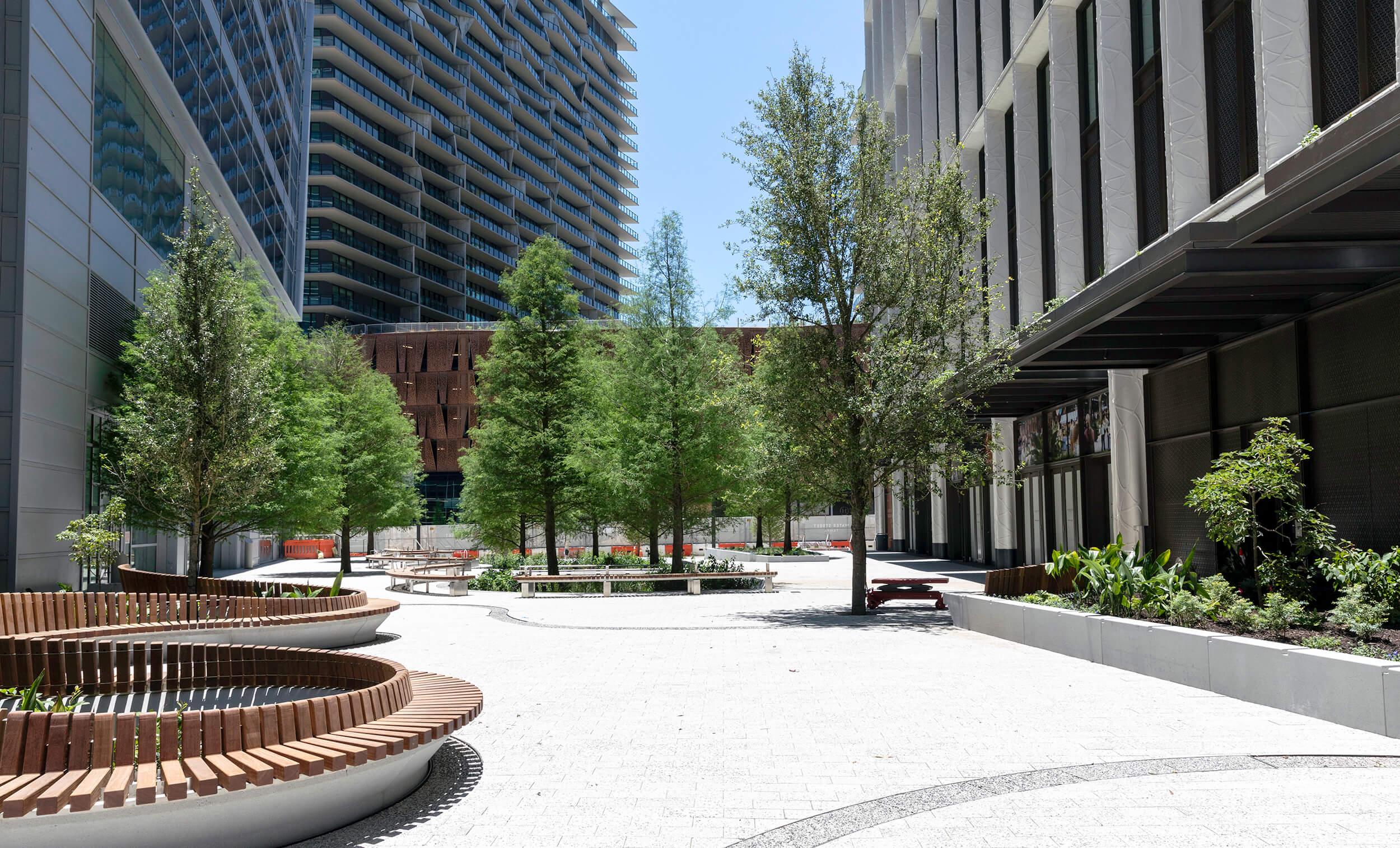 A plaza filled with trees and benches for pedestrians in the Water Street Tampa neighborhood